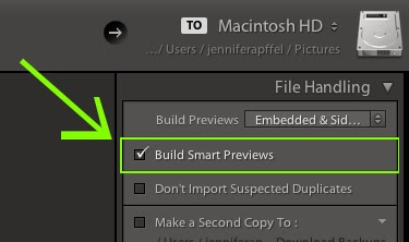 how to use smart previews in lightroom