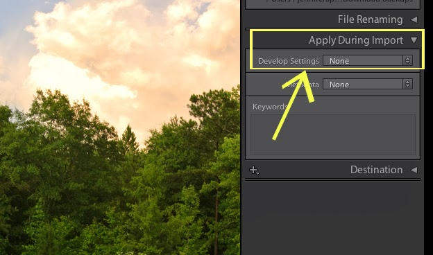 Want to Blow Your Mind? Development Settings Importing in Lightroom