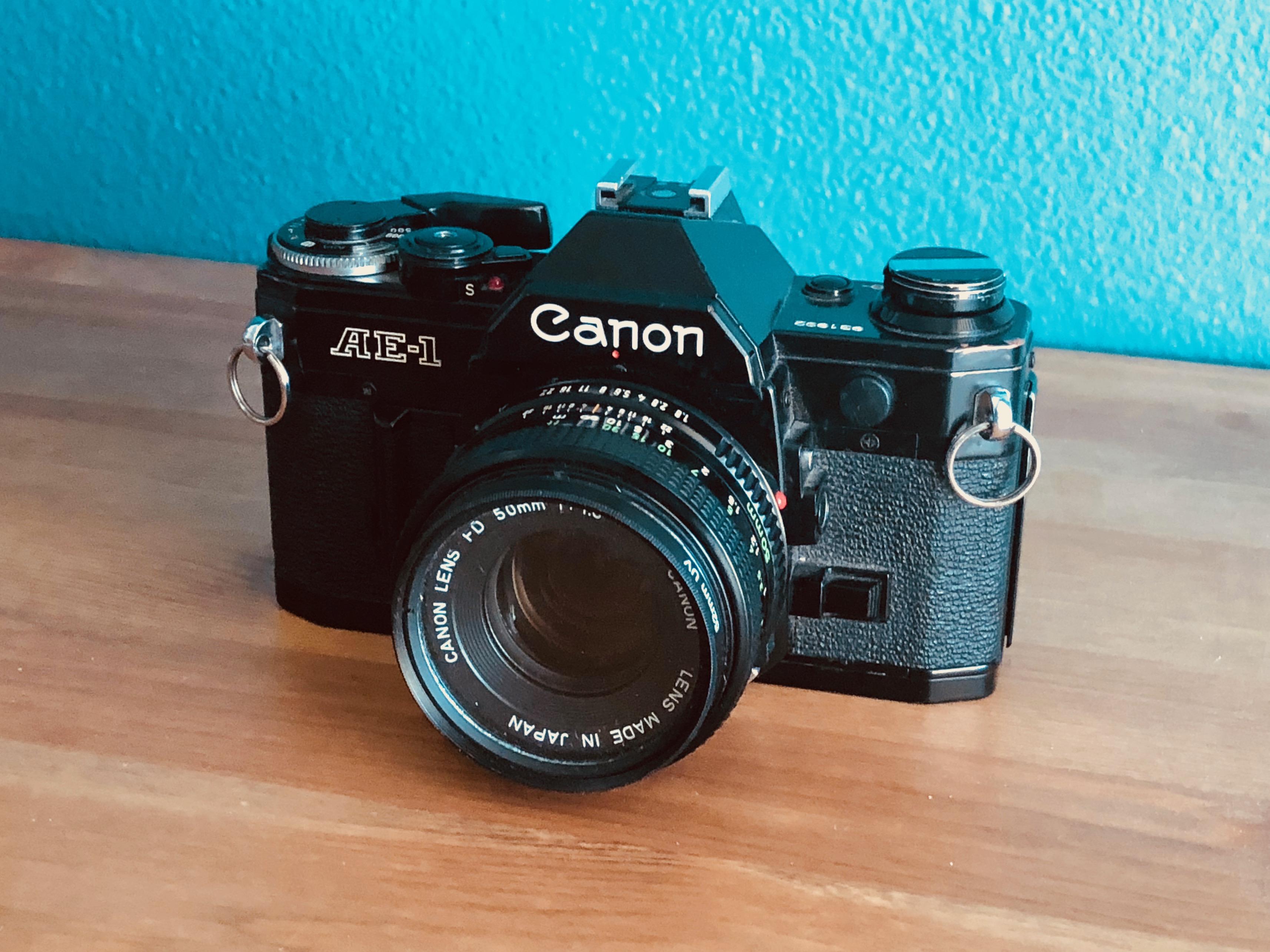 Best Film Cameras For Beginners - Spotlight