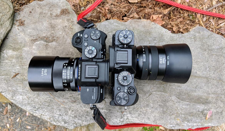 Full Frame vs. Crop Sensor Cameras